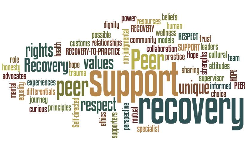 what is a peer support specialist and how can you become
